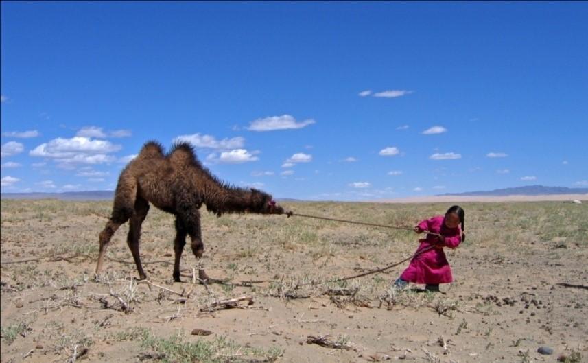 Mongolia Gobi Kharkhorin